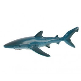 Sinji morski pes, 19 cm