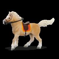 palomino konj